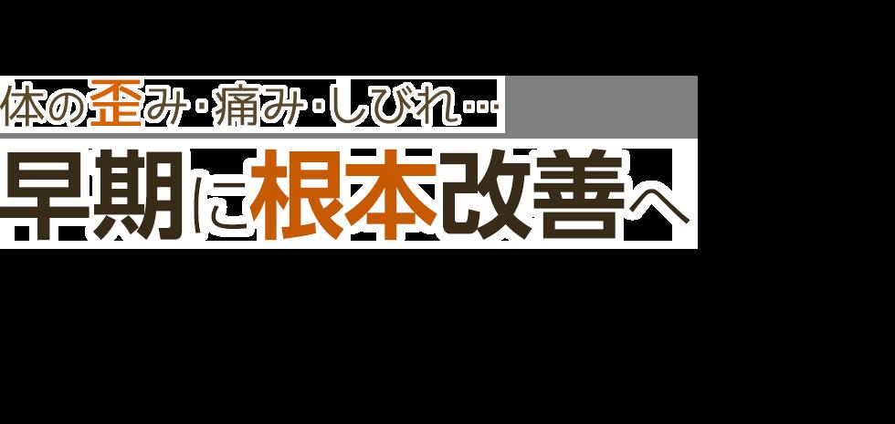 「一心整骨院」岡山市東区の整体・骨盤矯正で口コミ評価NO.1 メインイメージ